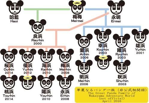 panda-family-2016.jpg
